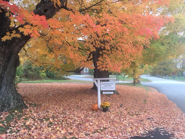 Foliage Season Bed and Breakfast NH